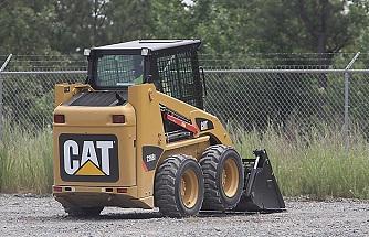 cat-226